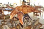 An amazingly carved Turtle in the dining area