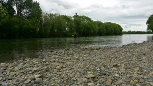 Me wading out to catch a fish at Dakins Road
