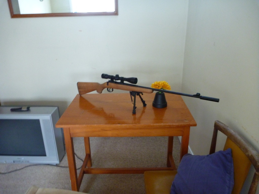 The Norinco JW-15 before the barrel and stock chop